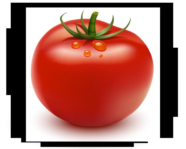Adobe Illustratorを使ってトマトを描く方法