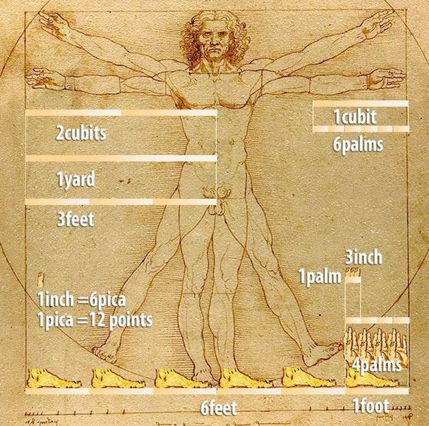Da_Vinci_Units_cut_s