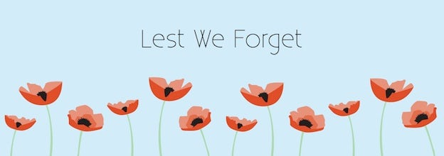 Red Poppies Against Baby Blue Background Banner