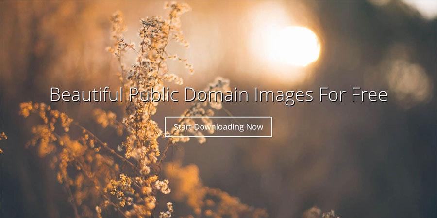 free public domain images