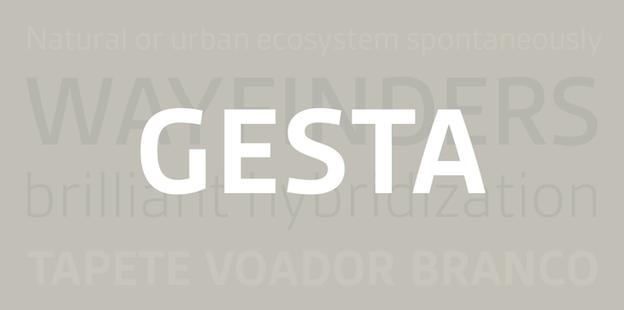 organizing fonts