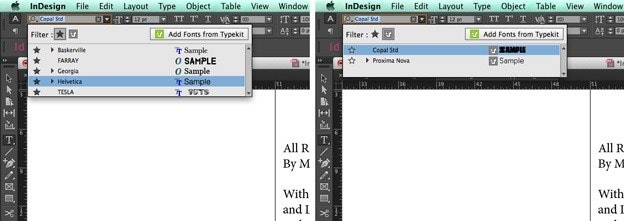 Using text in Adobe Indesign: Filters