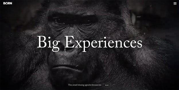 Big_Really_Big