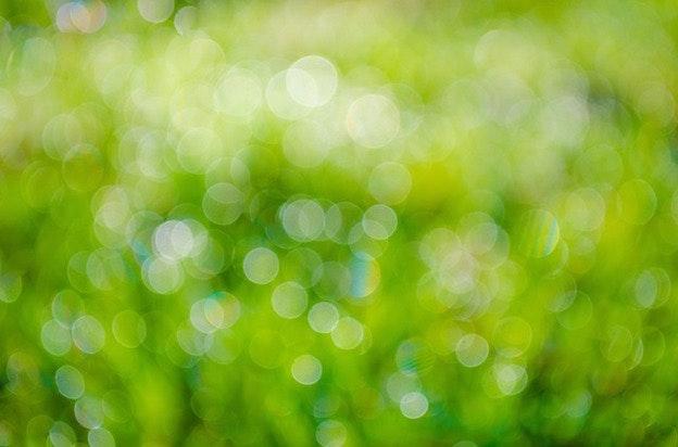 green-315275_640