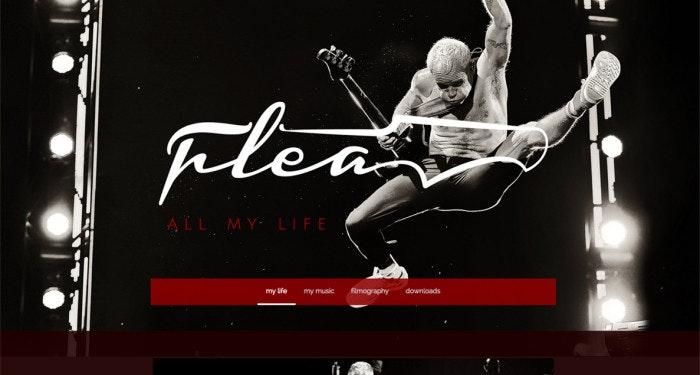 winner-Fleabass