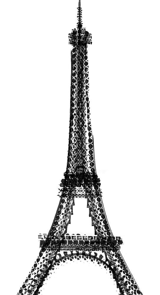 Tour Eiffel Thomas Yang