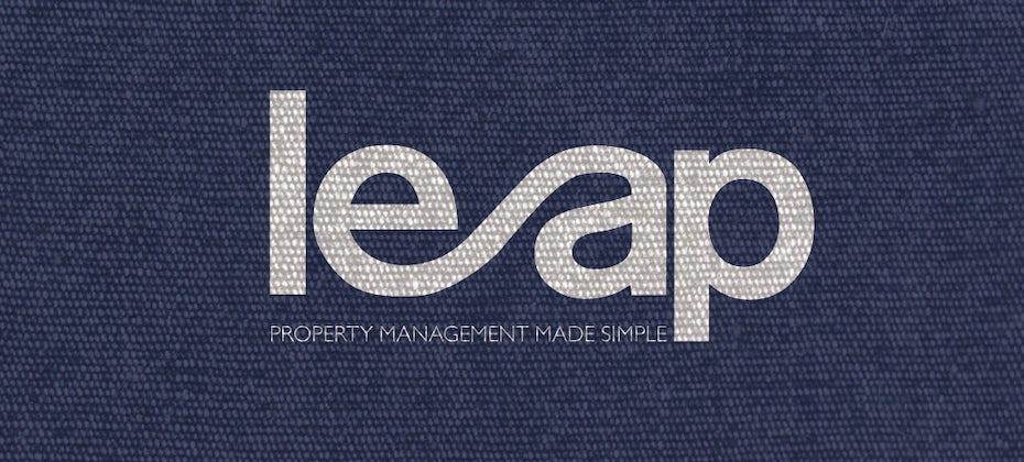 29 leap logo
