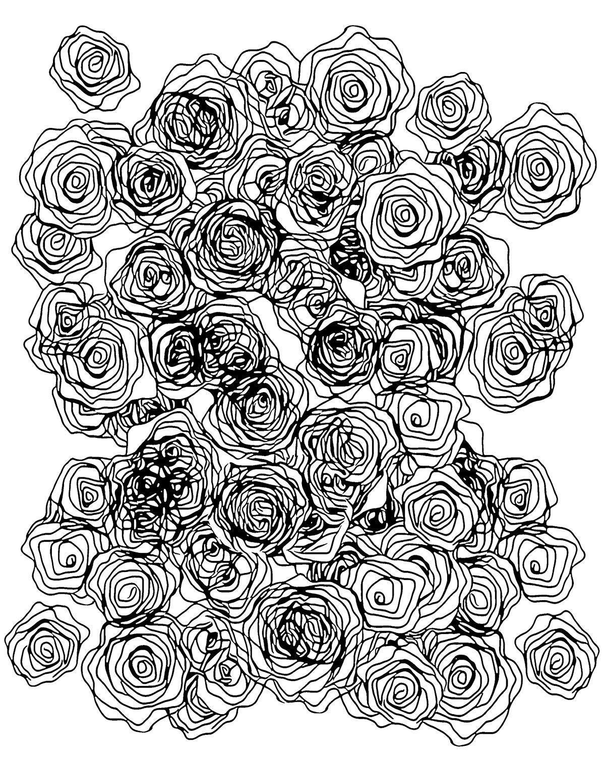 14 malbuch rosen
