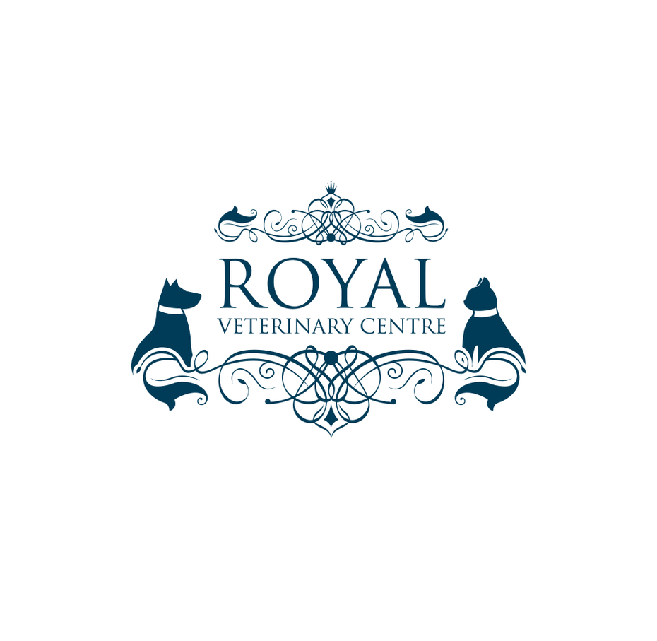 41 royale katzen