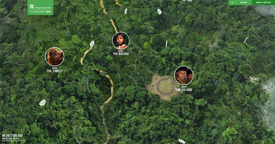 2016 web design trends: 360 degree panorama (Rainforest by Regnskogfondet)