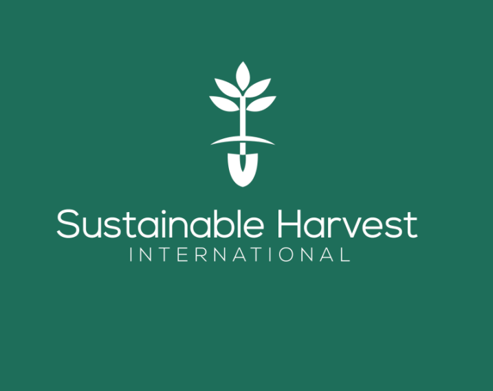 3 logo grün