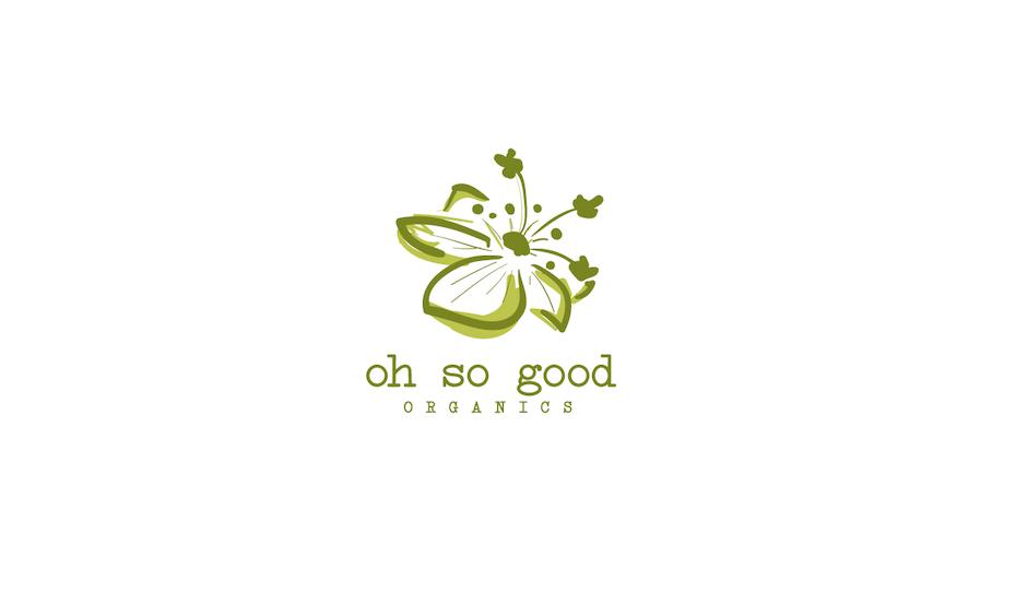 6 logo grün