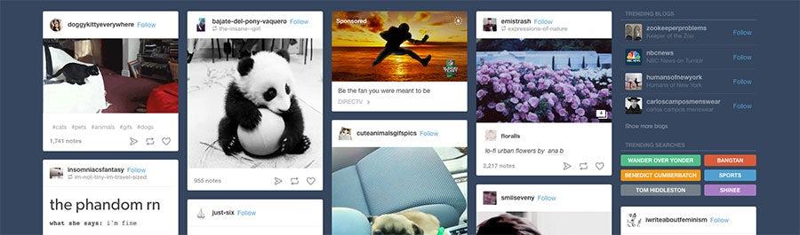tumblr social media