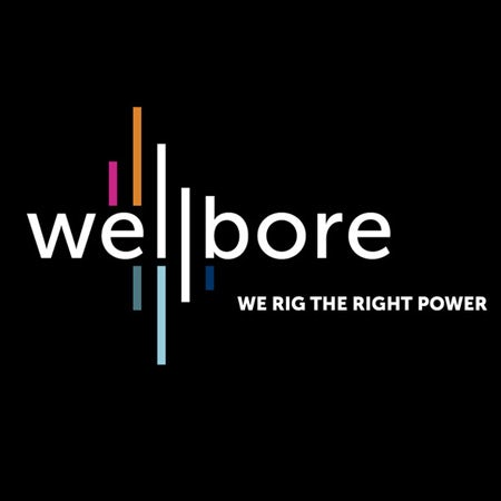 Wellbore logo with museo logo font