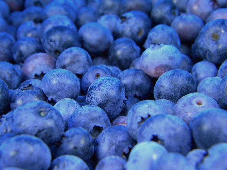 blueberries blue fruit antioxidants berries farmer's market