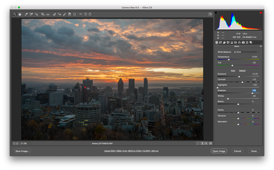 The Adobe Photoshop interface showing a RAW image