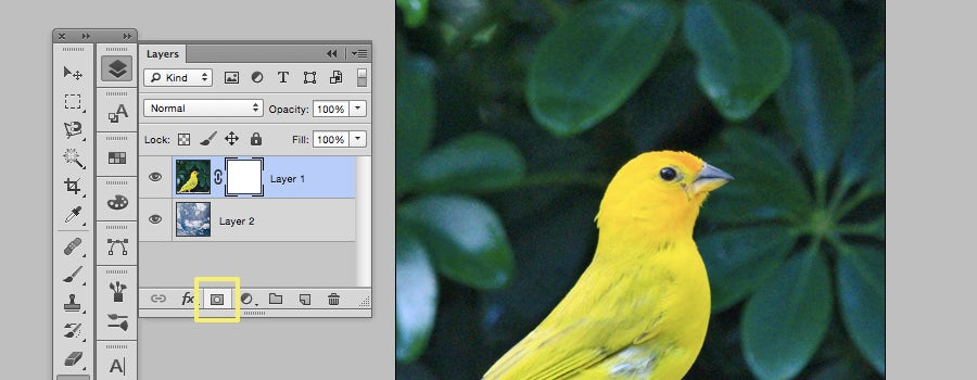 layer masks how to