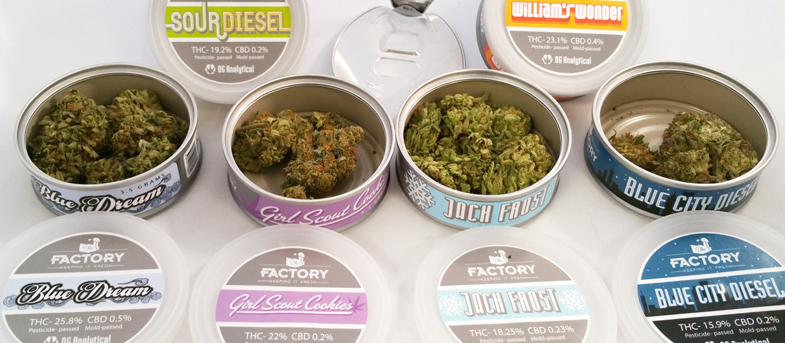 thc factory cans