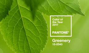 And the 2017 Pantone Color of the Year is…