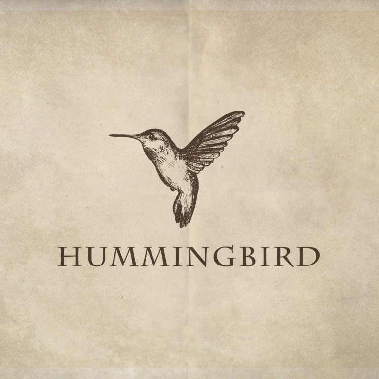 creative logo design with handdrawn hummingbird