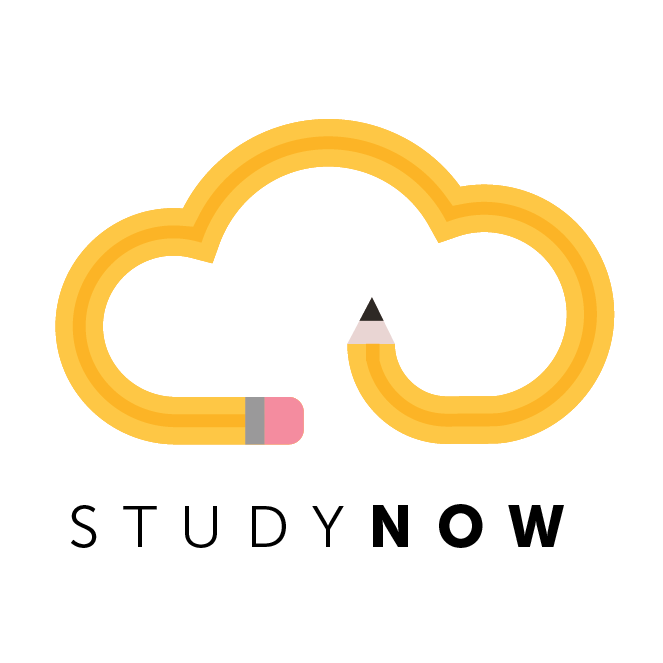 Studynow tech logo design