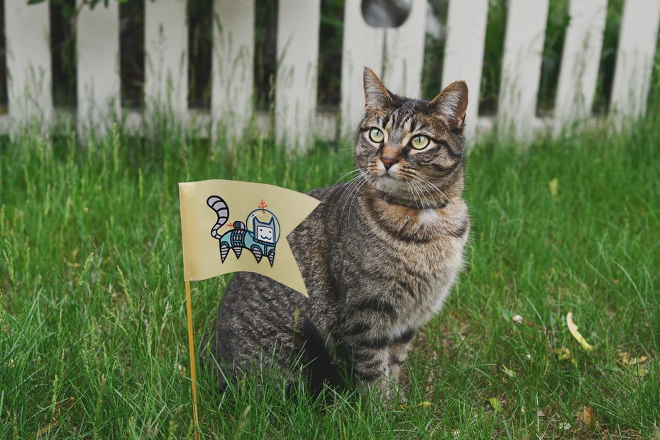 A cat next to a sticker of an astronaut space-cat