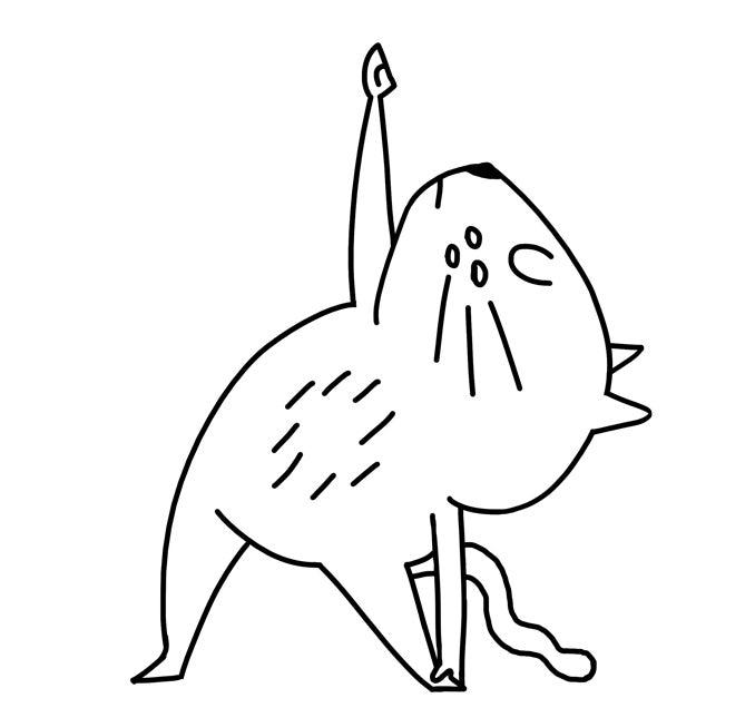 yoga cat triangle pose