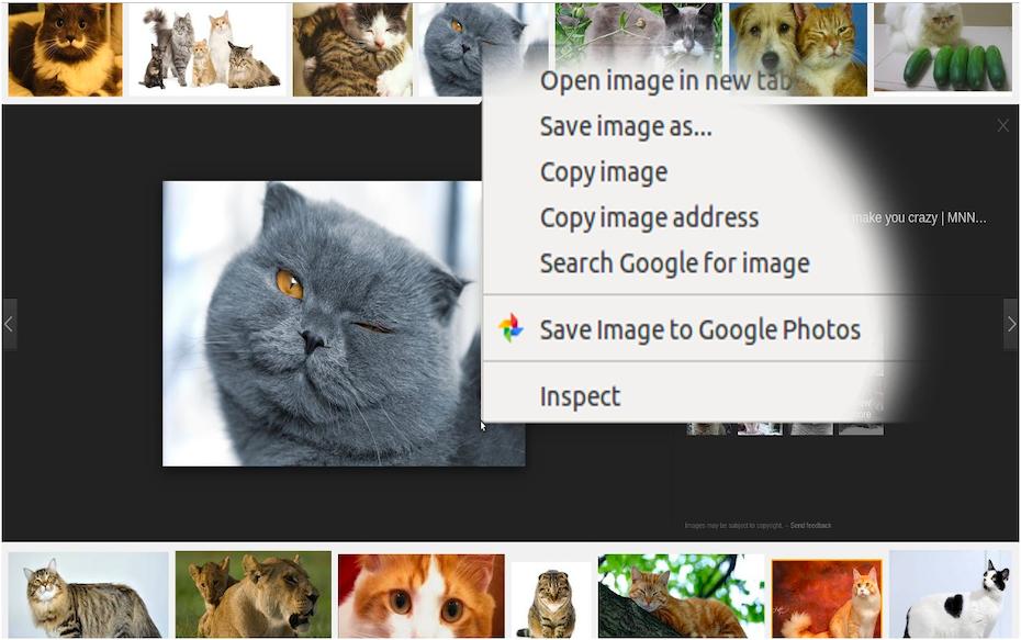 Save to Google Photos screenshot