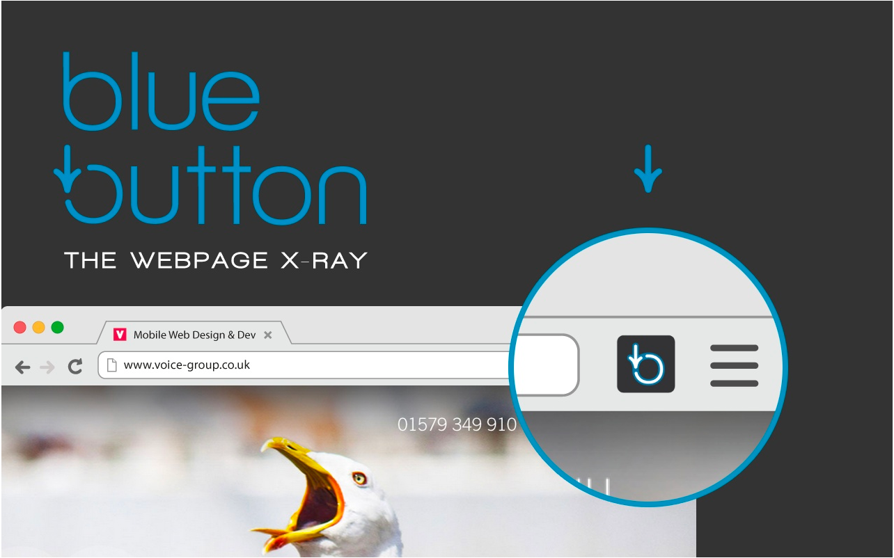 Blue Button screenshot