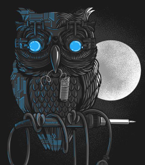 Hacker owl