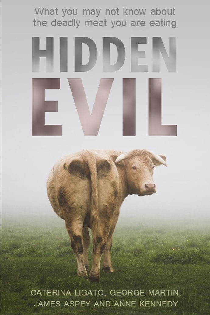 Hidden evil book cover