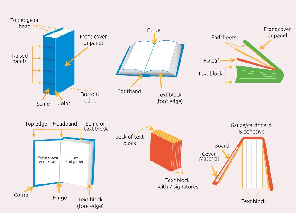 parts of a book diagram