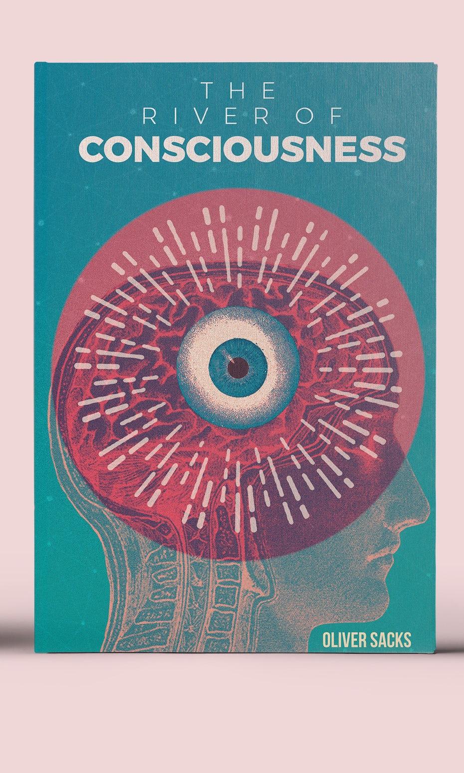 The River of Consciousness Cover Redesigned