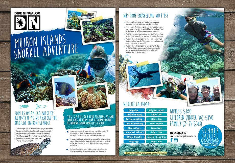 Flyer for diving company
