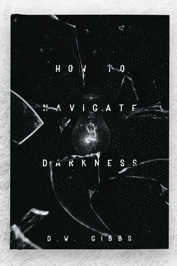 How to Navigate Darkness book cover