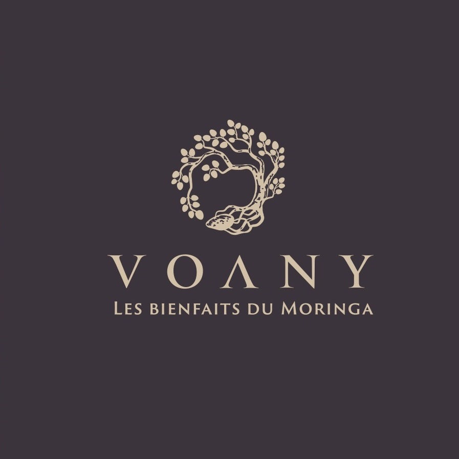 Classic logo design for Voany
