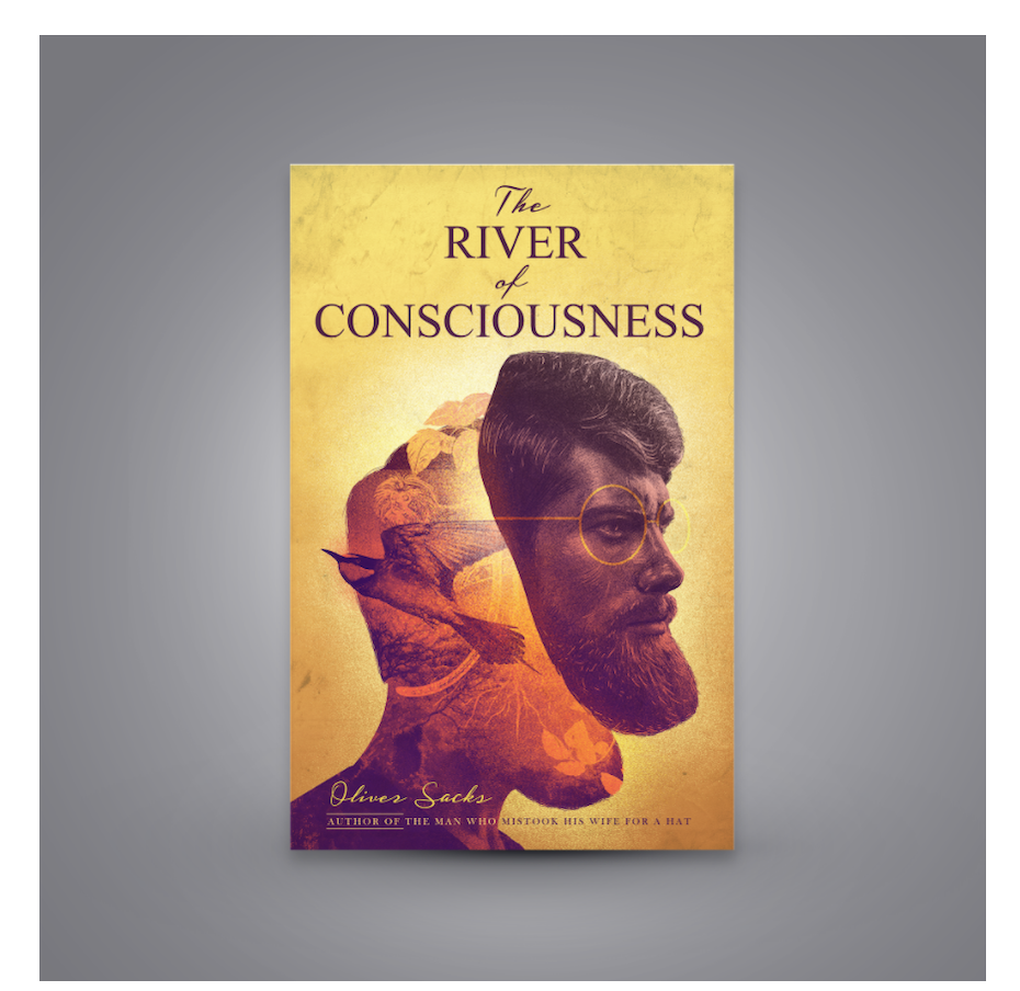 The river of consciousness cover