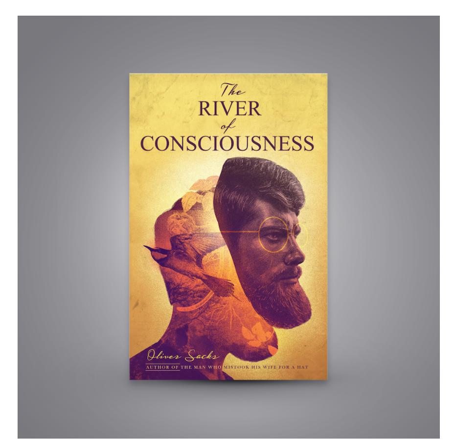 The river of consciousness cover
