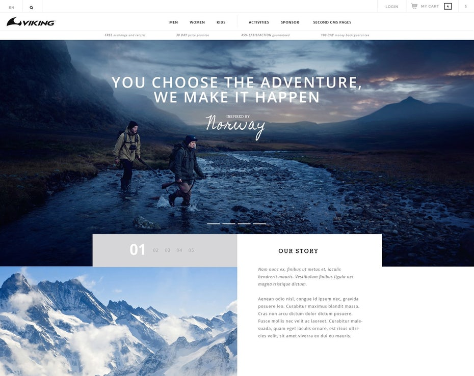 clean web design for Viking