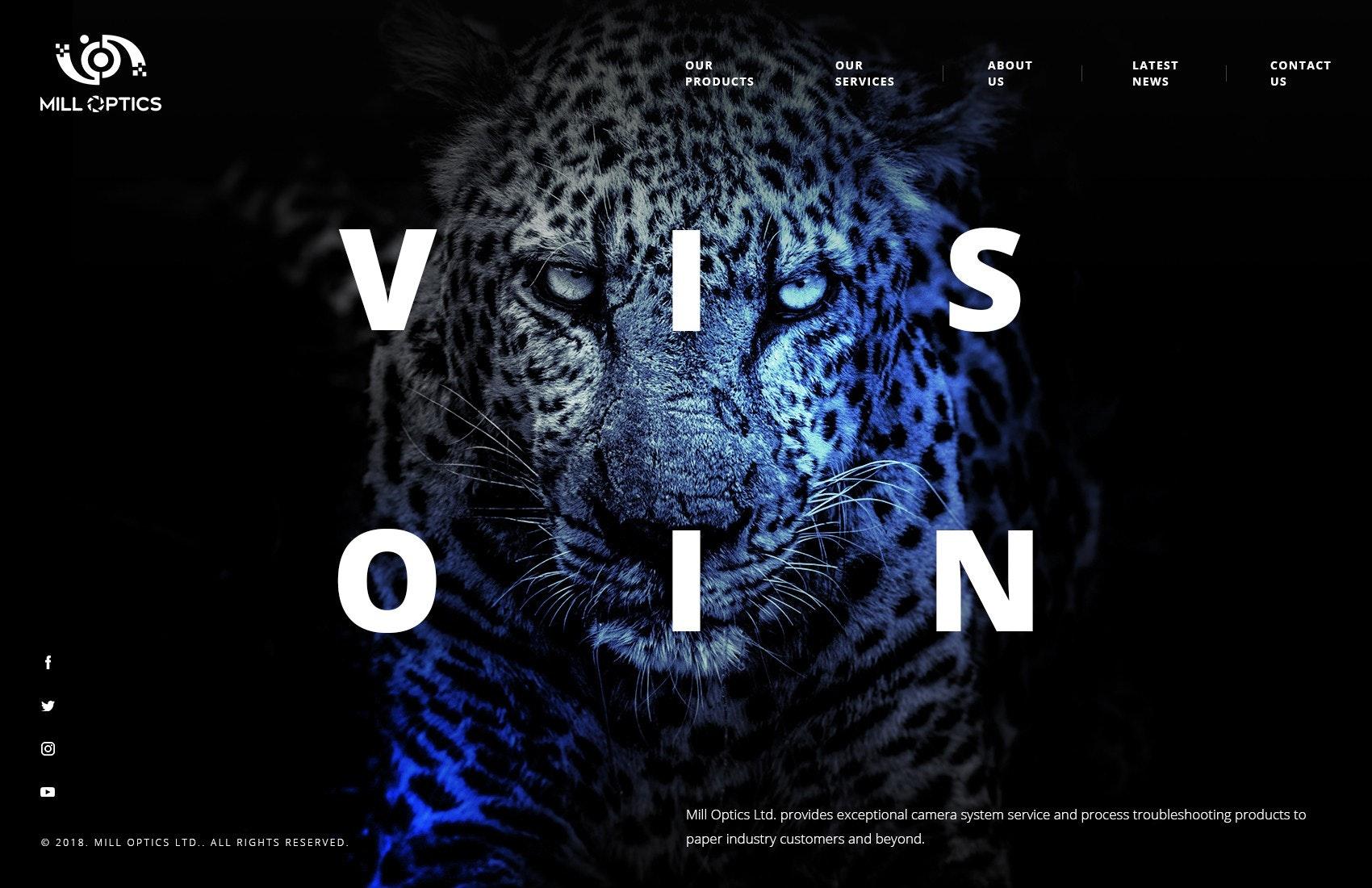 vision web design