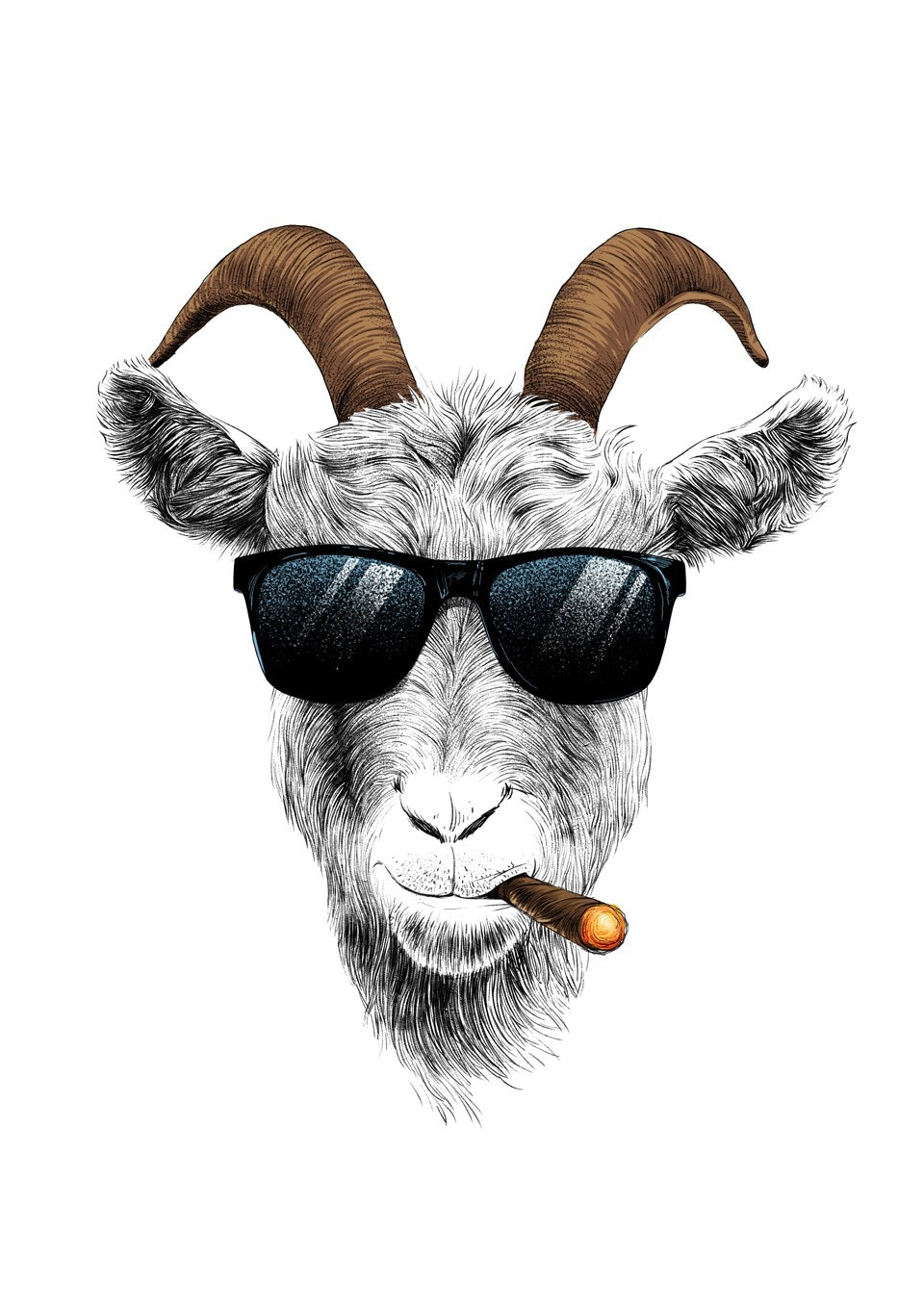 Goat smoking cigar