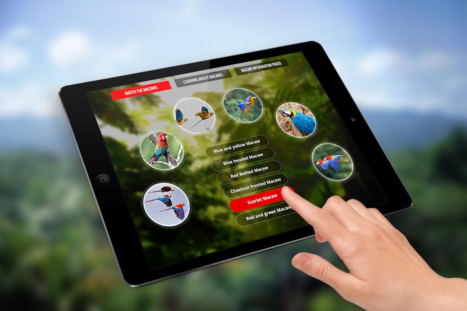 Macaws app