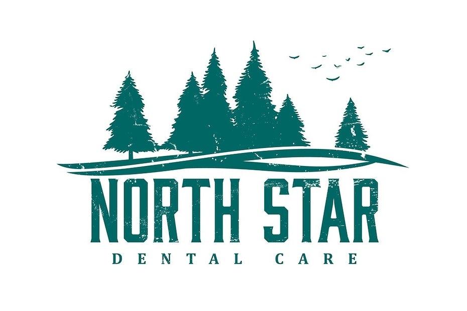 North Star Dental Care logo