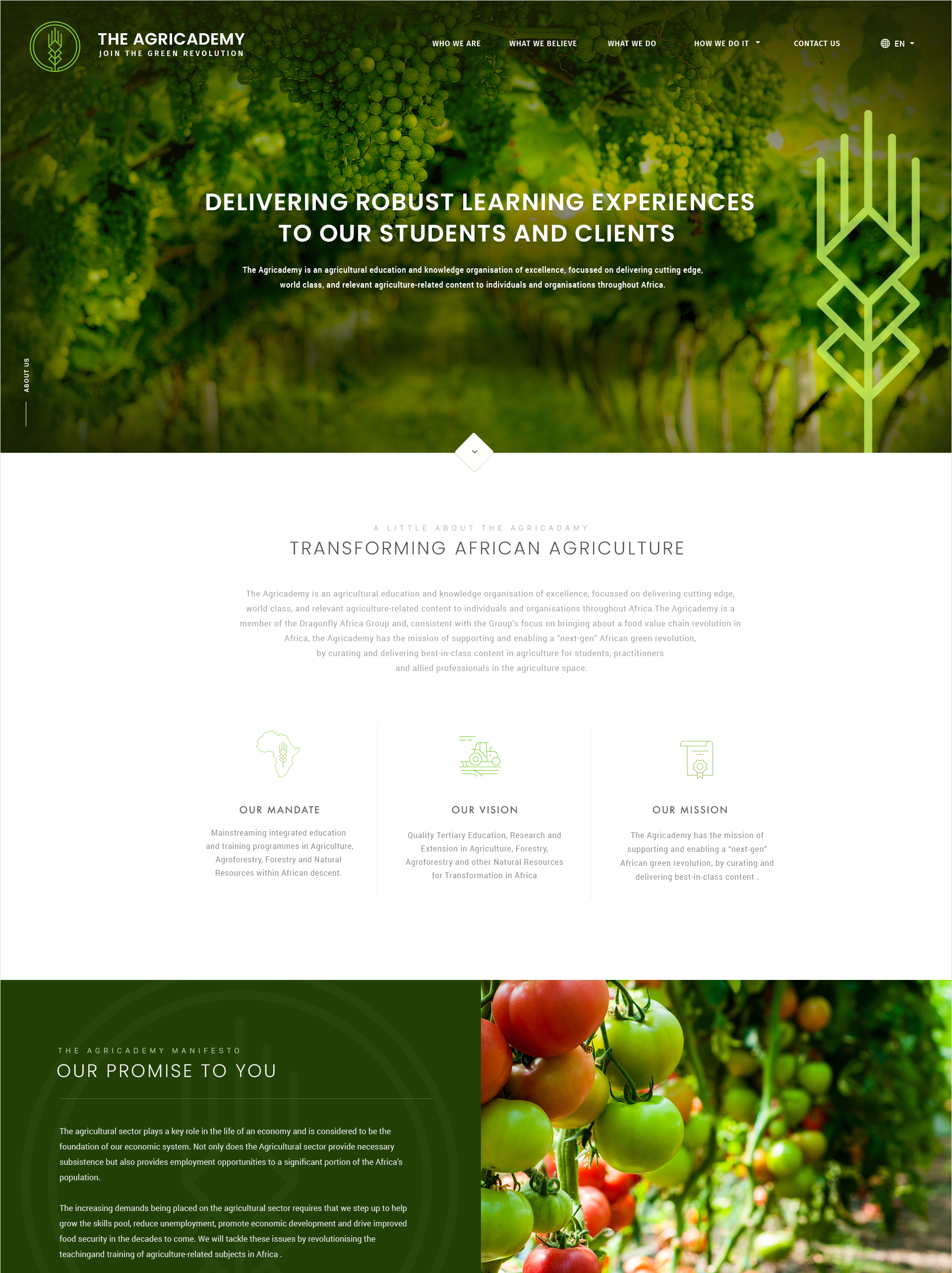 Clean and modern web design