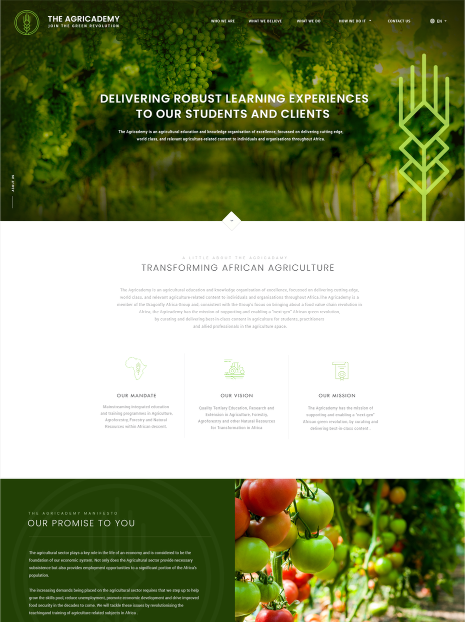 20 stunning web design ideas that will get everyone clicking ...
