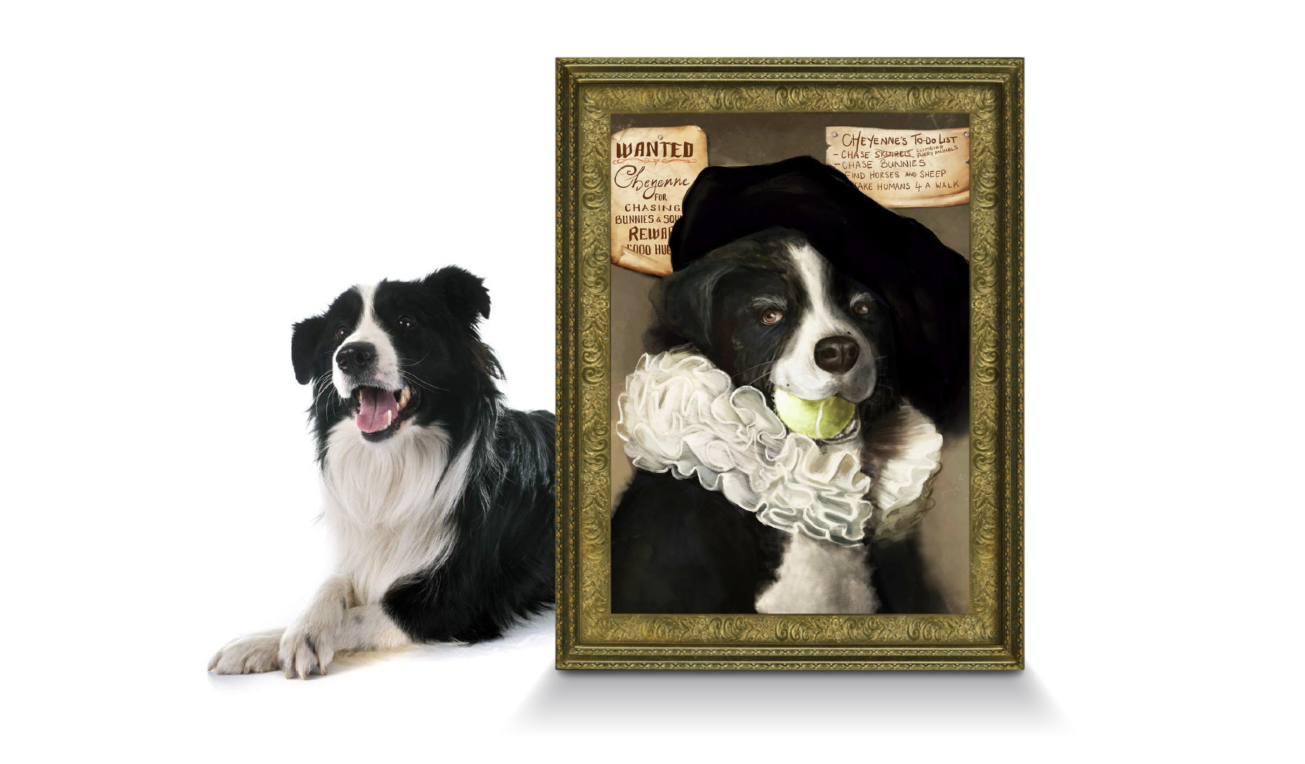 Pet portraits: how to get charming, custom artwork of your