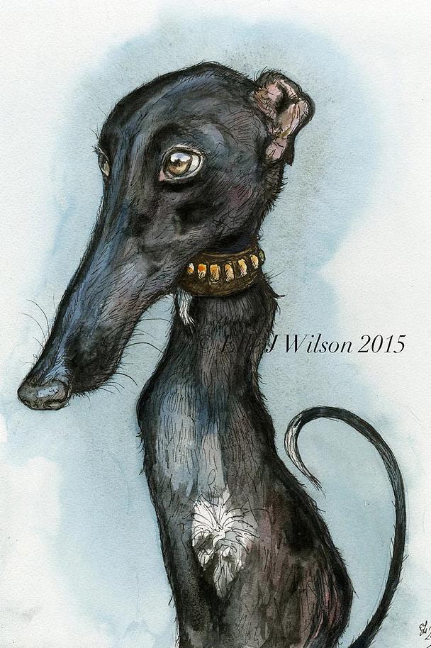 stylized greyhound portrait