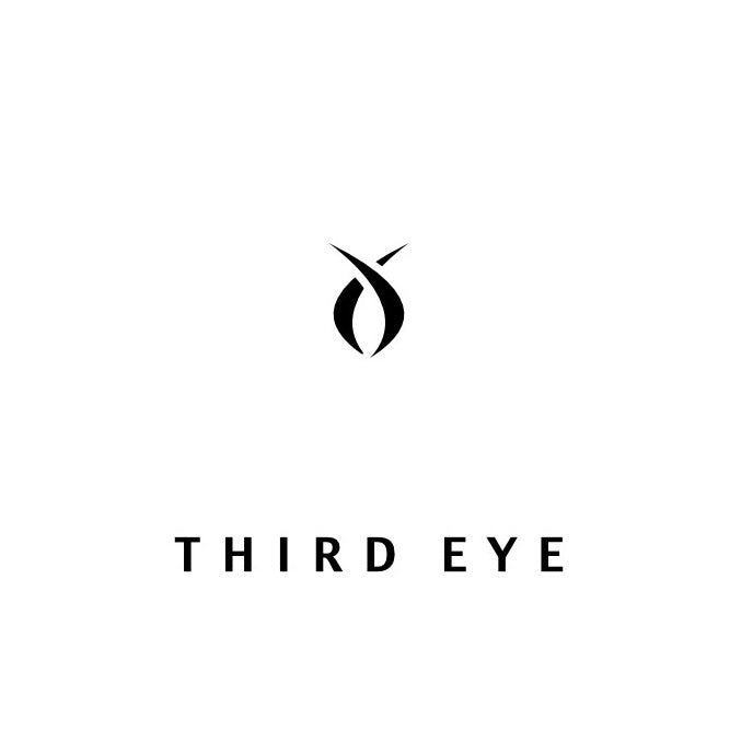 Third Eye logo