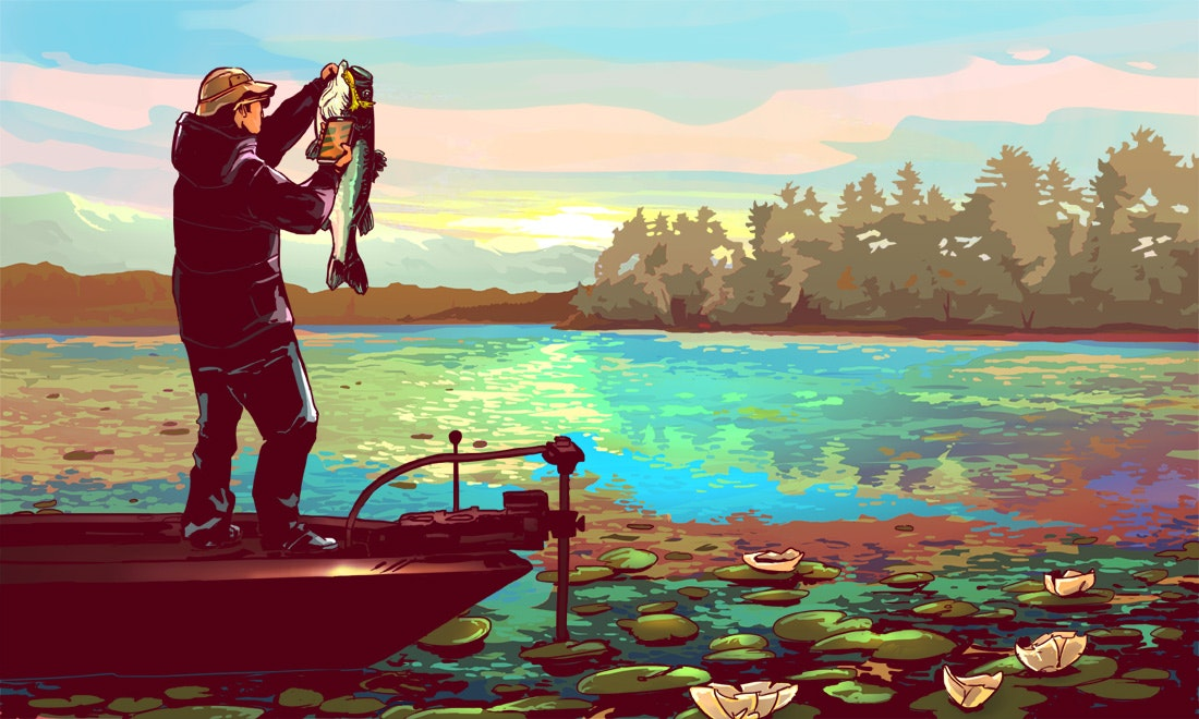 colorful illustration of a fisherman catching a fish