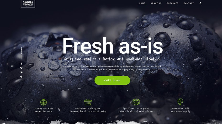 High contrast web design